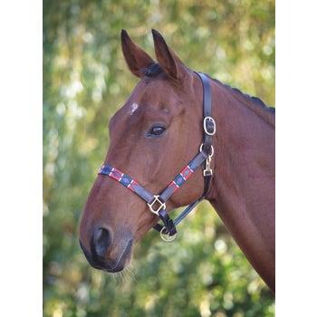 Blenheim Leather Polo Headcollar