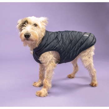 Digby & Fox Padded Dog Coat