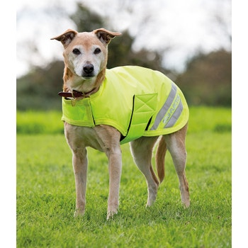 EQUI-FLECTOR Dog Coat