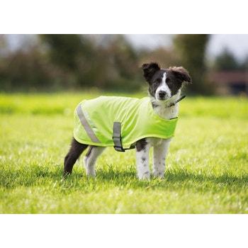 EQUI-FLECTOR® Dog Safety Vest