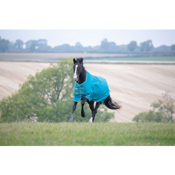 Tempest Original 300 Turnout Rug