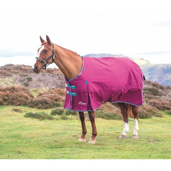 Highlander Original 300 Turnout Rug
