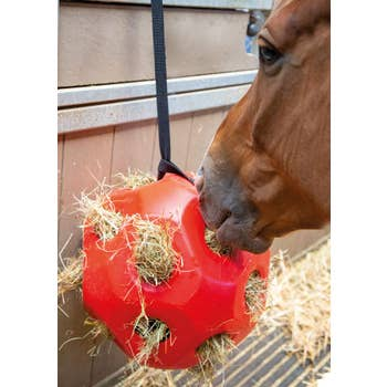 Hay Ball
